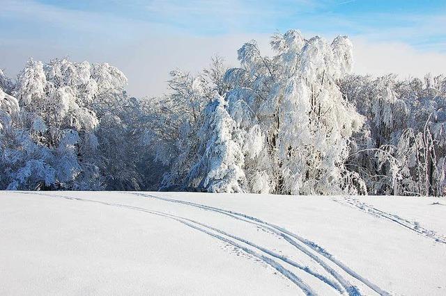Auf dem Kandel öffnet der Skilift wieder
