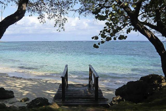 Hier schlägt der Puls der Karibik besonders hoch