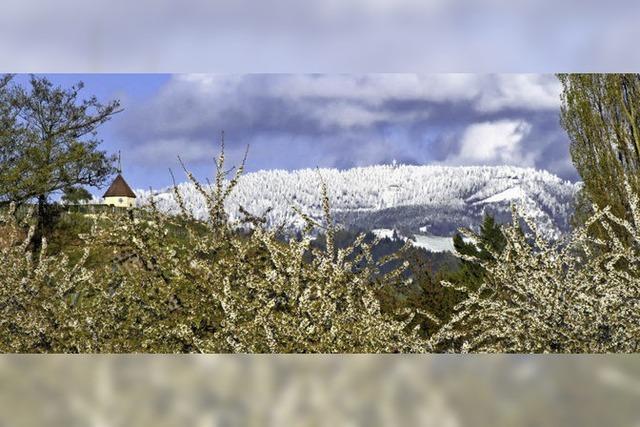 Schnee am Kilimandscharo?
