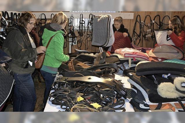 Pferdevorführungen, Showprogramm und Second-Hand-Markt in Birkendorf