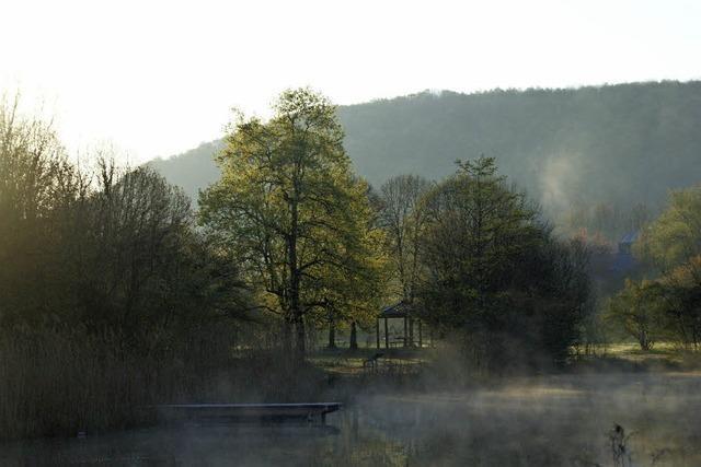 Grüttsee im Morgennebel