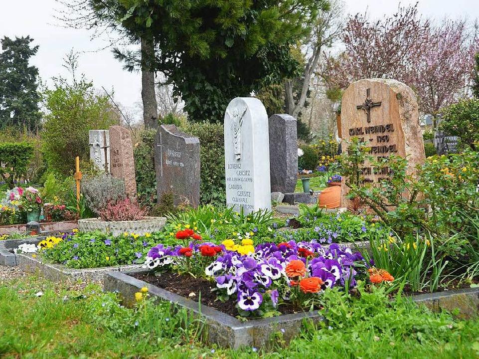 Ort der Stille: der Freiburger Hauptfriedhof  | Foto: Susanne Ehmann