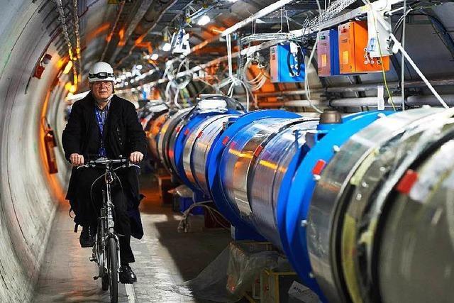 Steinmarder legt weltgrößten Teilchenbeschleuniger lahm