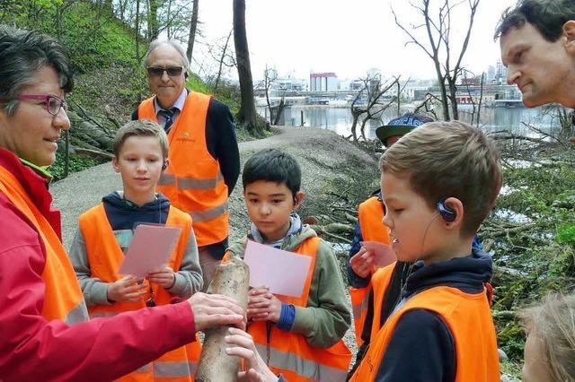 Was Kinder mit der Hector-Kinderakademie entdecken