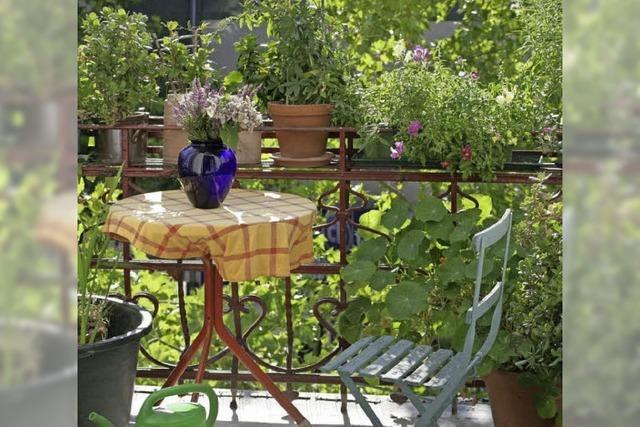 Mit dem Mai kommt die Zeit für Balkon und Terrasse
