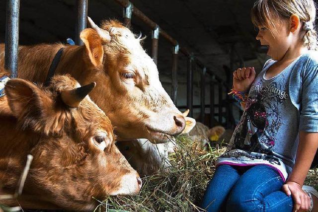 Urlaub auf dem Bauernhof – ein Erfolgsmodell wird 40