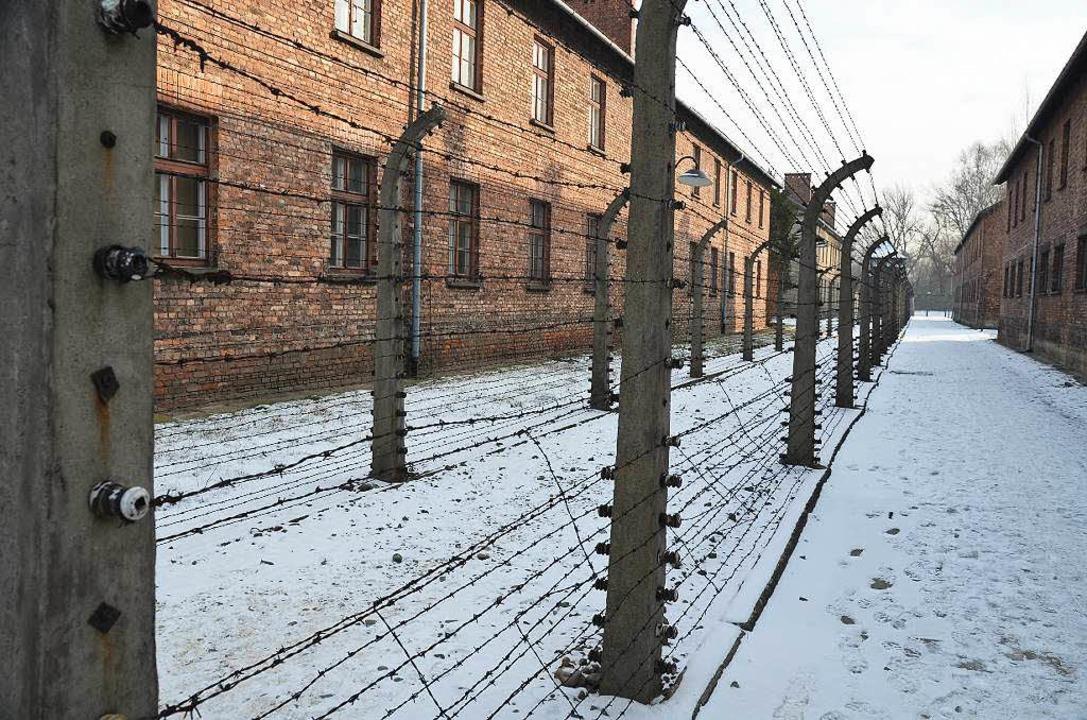 Die ehemaligen Häftlinge haben lange, harte Winter in Auschwitz überlebt.   | Foto: Soboll