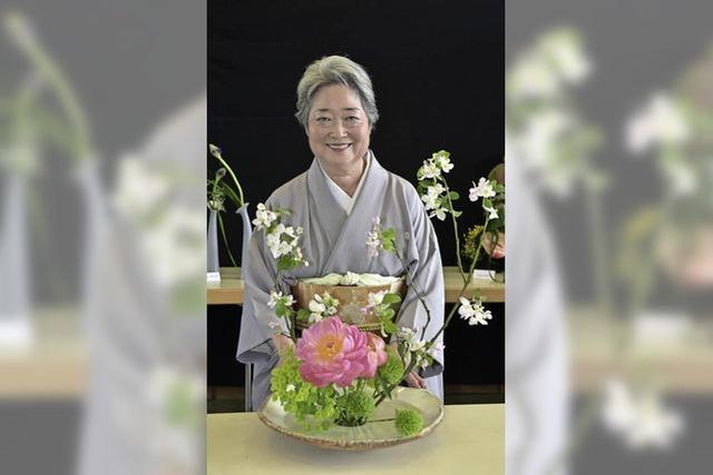 Japanisches Frühlingsfest am Seepark: Kunterbuntes Kodomonohi
