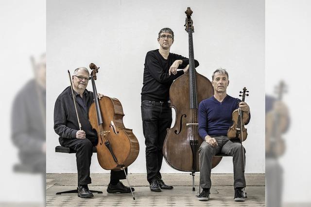 Das Trio Kimmig-Studer-Zimmerlin spielt in der Elisabeth-Schneider-Stiftung
