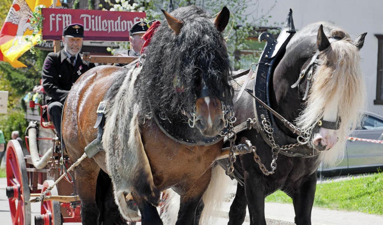Die Feuerwehrabteilung  Dillendorf rüc... zwei Pferdestärken zum Festumzug an.   | Foto: Wolfgang Scheu