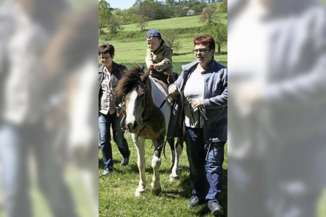 Hock auf dem Pony