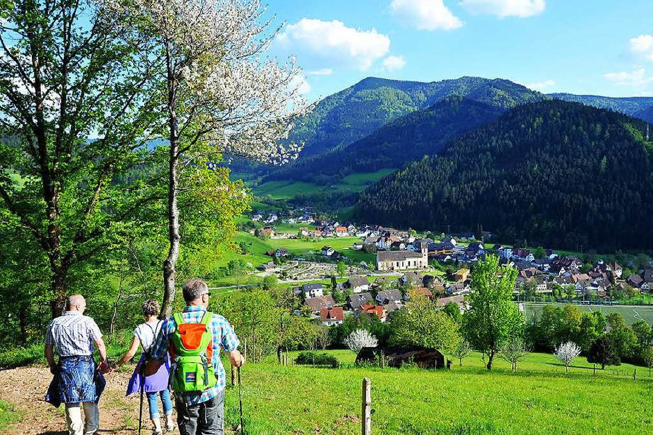 Ein Gipfeltreffen der Wanderfreunde bei Kaiserwetter auf dem Hörnleberg (Foto: Horst Dauenhauer)