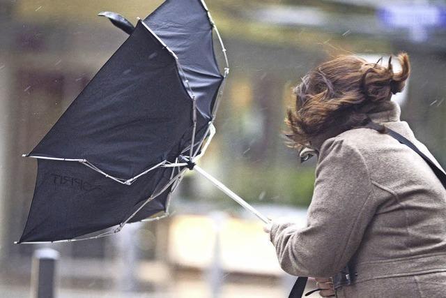 Bardamen vertreiben unerwünschten Gast mit Regenschirm