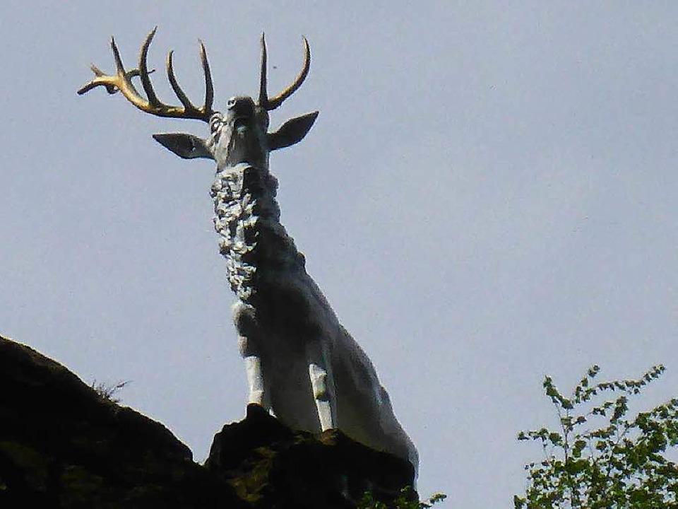 Dem Höllental-Hirsch fehlt auf seiner ...s – der größte Teil des Geweihs.  | Foto: Polizei