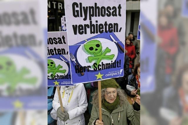 Koalitionskrach um Glyphosat