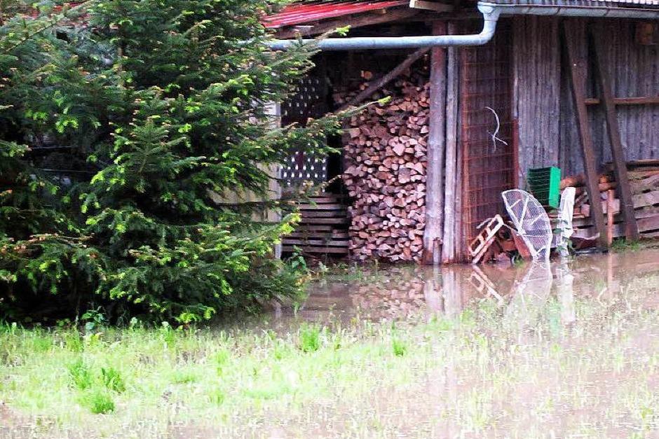 Eindrücke vom Hochwasser in Schwörstadt (Foto: Helmut Kohler )