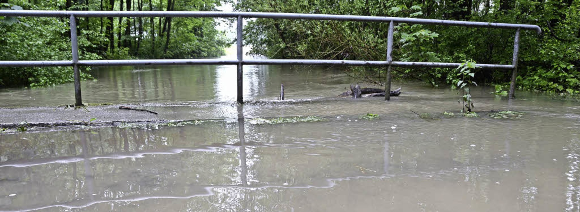 Jechtingen.  Mehr als 30 Zentimter war...ke im Wald bei  Jechtingen überflutet.  | Foto: Roland Vitt