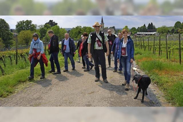 Wein und Tourismus harmonieren