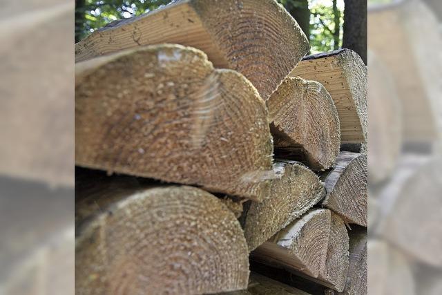 Weniger Überschuss bei der Holzernte