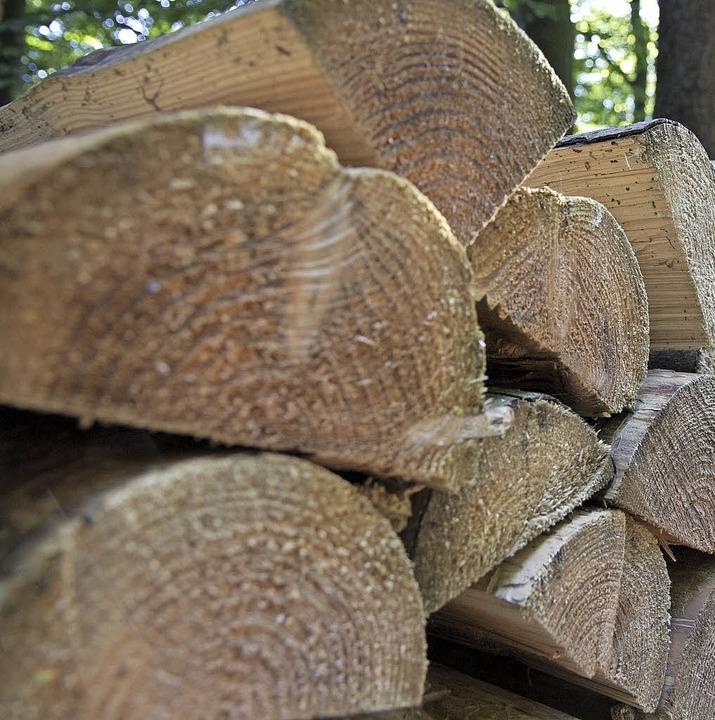 Holzernte im Wald.     Foto: Fleig