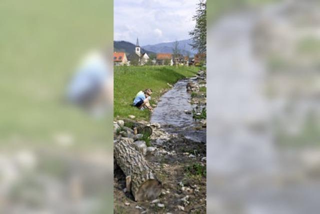 Stadt und Bürger haben ein Biotop in Grunern geschaffen