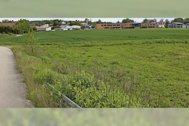 Gottenheim hält Fläche für Kreisunterkunft frei