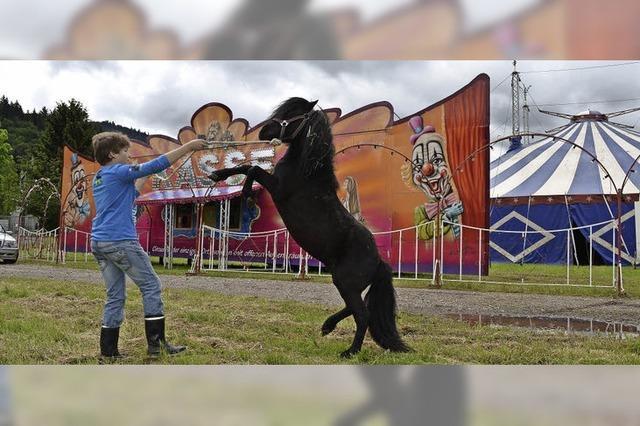 Zirkus Busch in Bleibach