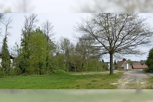 Wohnhäuser entstehen da, wo früher die Festhalle stand