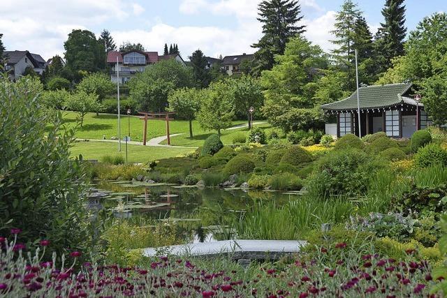 Volkshochschule bietet Qigongkurs im Freien in Bonndorf an