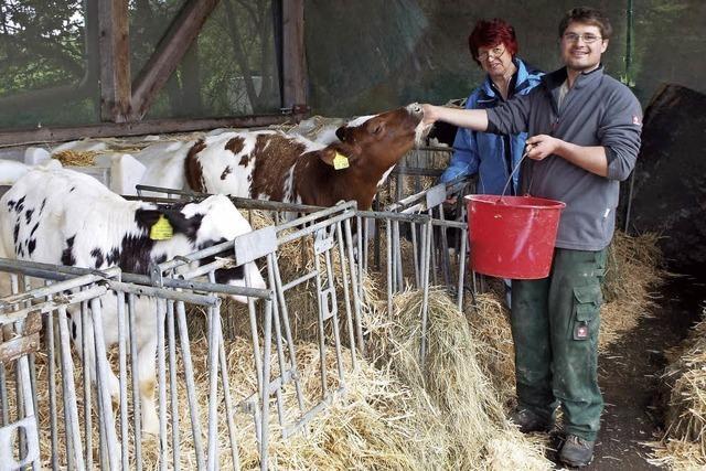 Milchpreisschock im Hotzenwald