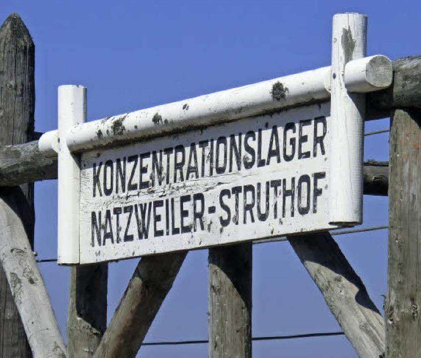 <BZ-FotoAnlauf>Neumattschule: </BZ-Fot...besuchten das KZ Natzweiler-Struthof.   | Foto: zvg