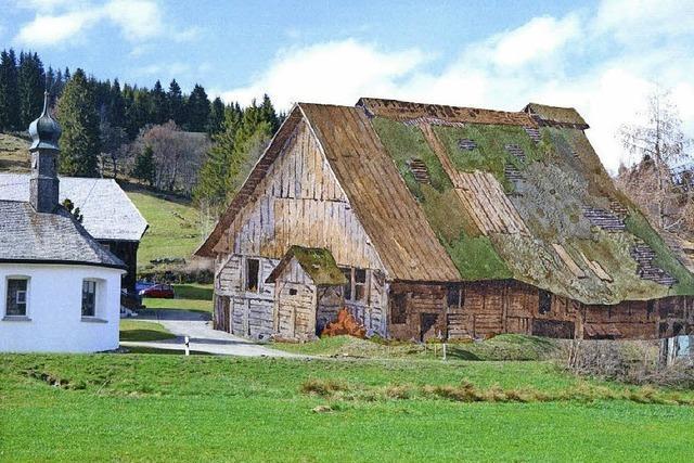Sommer 1715: Standort wird festgelegt und die Glashütte errichtet