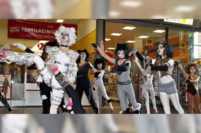 Ein Flashmob in Sachen Musical