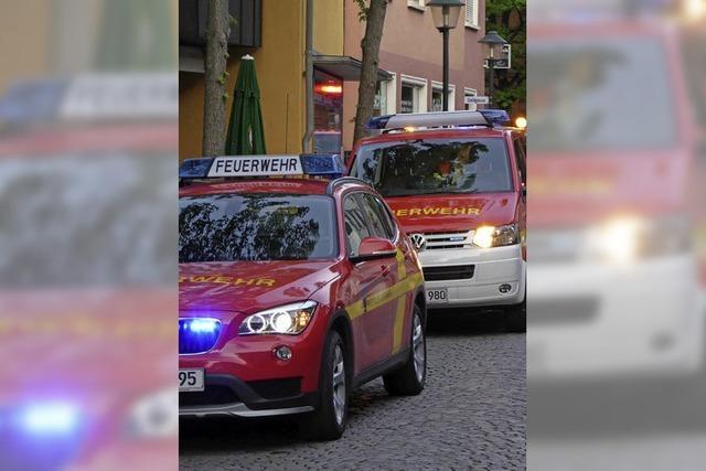 Feuerwehr ohne Pause im Einsatz