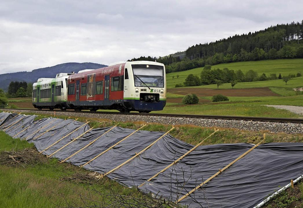 Planen, wie hier am Bahnwall zwischen ...echsen, beziehungsweise vergrämen sie.  | Foto: Daniel Fleig