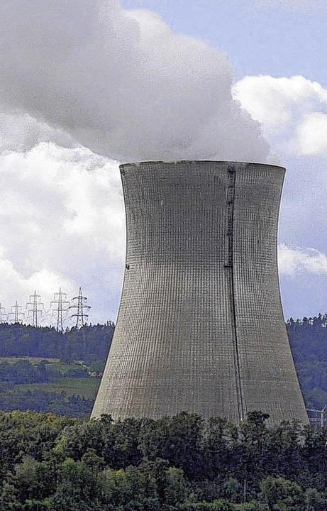 Das Kraftwerk in Leibstadt gegenüber Waldshut  | Foto: Manfred Herbst