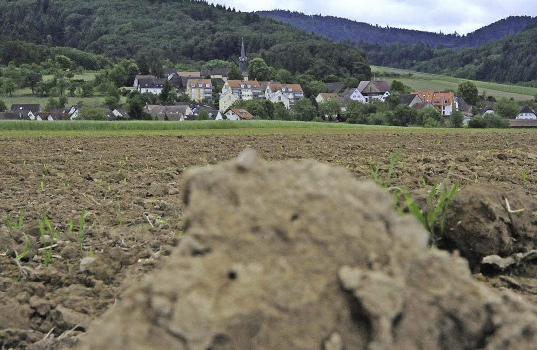 Noch ist es nur eine Ackerscholle, die... Blick auf das Dorf verstellen könnte.  | Foto: Markus Zimmermann