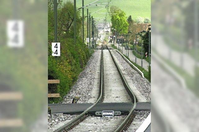 Münstertal gibt Glasfaser-Masterplan in Auftrag