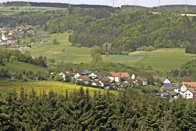 Stadt ebnet Weg für neues Baugebiet in Unterwangen