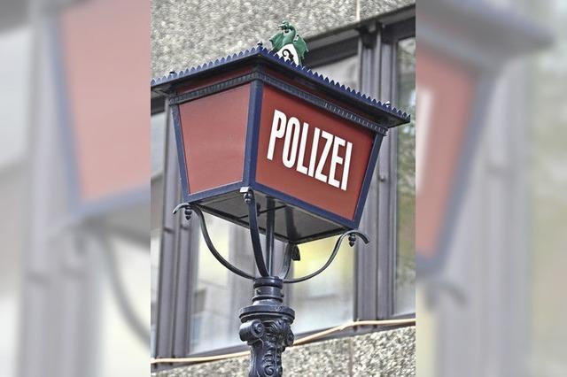 Basel schafft virtuelle Polizeiwache