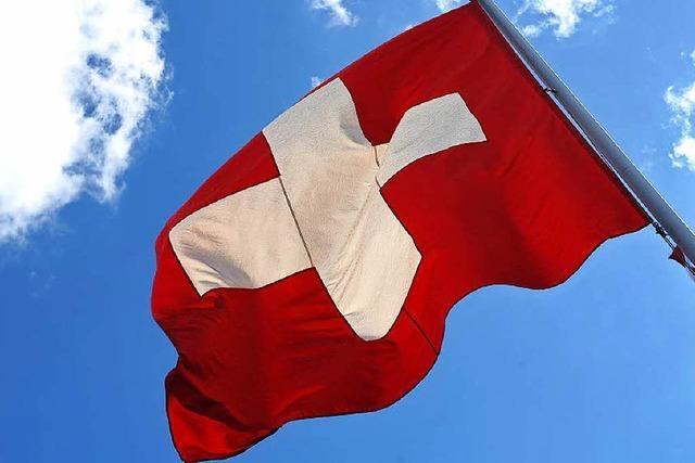 Schweizer lehnen Grundeinkommen ab - Asylreform angenommen