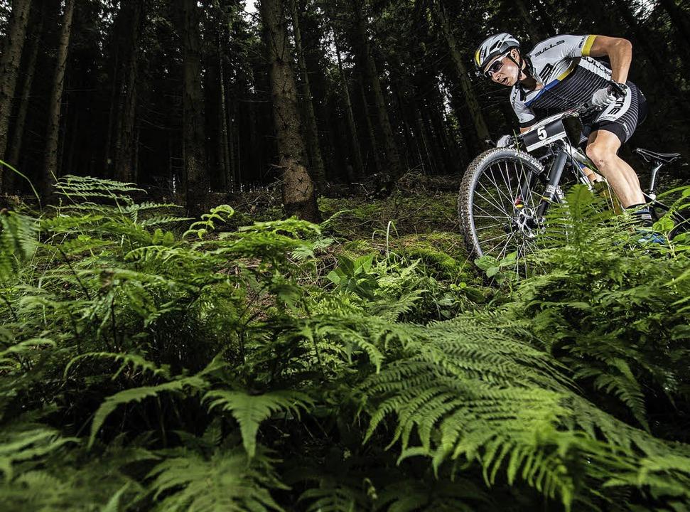 In jedem Gelände ein Könner: Mountainbiker Simon Stiebjahn aus Langenordnach.   | Foto: küstenbrück
