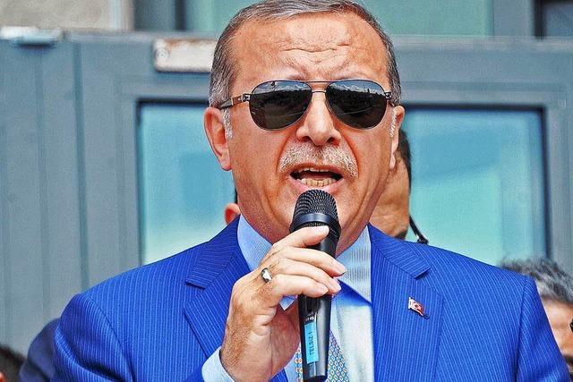 Erdogan fordert Bluttests für türkischstämmige Abgeordnete