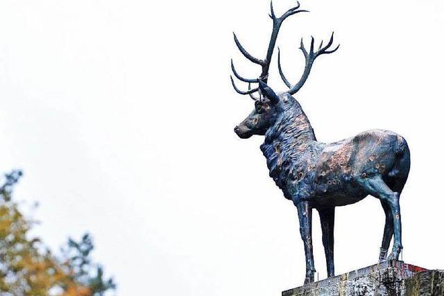 Der Hirsch im Höllental bekommt ein neues Geweih