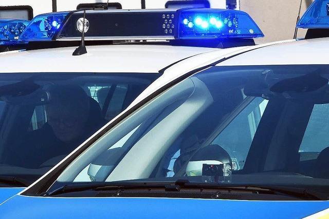 Polizei rettet Schäferhund aus heißem Auto