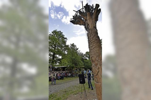 Künstler Thomas Rees schafft Baumskulptur für Waldhockplatz