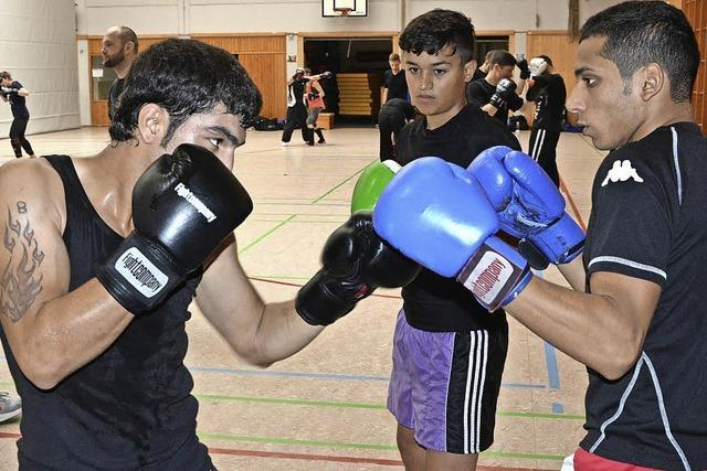 Der Kampfsport liegt im Trend