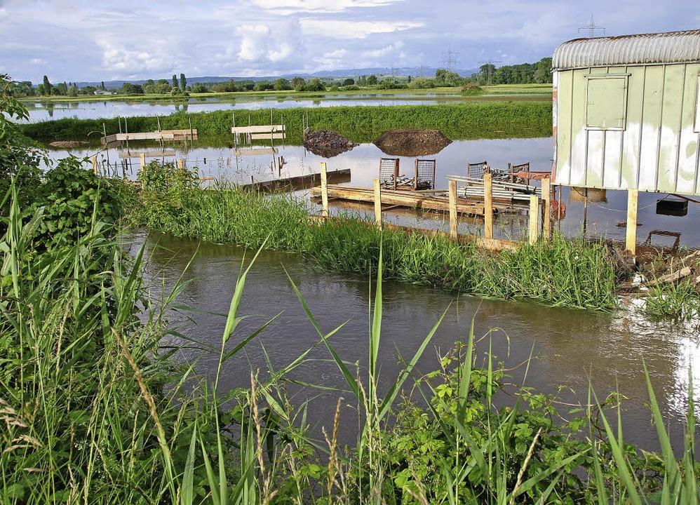Wieder mal Land unter am Wochenende be...mm die unter Wasser stehenden Felder.   | Foto: manfred frietsch