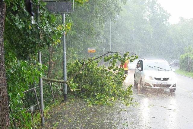 Gewittersturm mit Hagel in Weil am Rhein – Feldwege weggeschwemmt – Bäume umgestürzt