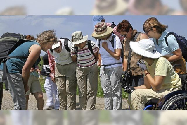 Inklusive Kräuterwanderung mit Martina Keller in Feldberg